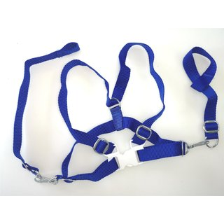 safety harness blue for kids